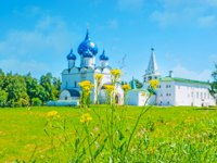 Суздаль. Medieval Nativity Cathedral and Archbishop's residence of Suzdal Kremlin through the lush wildflowers, covering the old shaft. Фото efesenko-Deposit