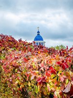 Золотое кольцо России. Владимир. The dome of the church on the horizon behind a bush, Vladimir. Фото KURLIN_CAfE - Depositphotos