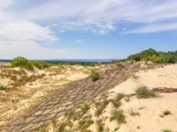 Россия. Калинградская область. Дюны. Sand dunes of the russian part Curonian Spit. Kaliningrad region, Russia. Фото Belikart - Depositphotos