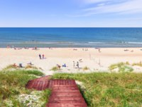 Россия. Пляжи Калининграда. Beach on the Curonian Spit on the Baltic Sea coast. Kaliningrad region, Russia. Фото Belikart - Depositphotos