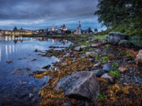 Россия. Соловецкие острова. Algae of the White Sea between the rocks and the Solovetsky monastery in the distance in the white night. Фото yulenochekk-Deposit