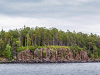 Клуб путешествий Павла Аксенова. Россия. Карелия. Остров Валаам. Forest on the rocky coast of Valaam island, Karelia, Russia. Фото borisb17-Depositphotos