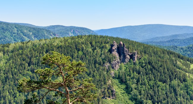Россия. Красноярские столбы. Rock massif Ermak. Mixed forest near rocks. Stolby Nature Sanctuary (Pillars). Krasnoyarsk region. Фото zhaubasar - Depositphotos