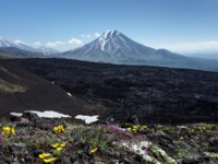 Россия. Камчатка. Bolshaya Udina Volcano. Eurasia, Russian Federation, Kamchatka Peninsula, Klyuchevskaya Group of Volcanoes. Фото petropavlovsk - Depositphotos