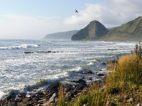 Россия. Курильские острова. Stormy sea at island Kunashir coast, the Kuril ridge,Russia, Pacific Ocean. Фото redtc - Depositphotos