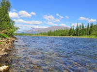 Россия. Плато Путорана. Pebble river Nakta on the Putorana plateau. Water summer landscape of the Siberian mountain rivers. Фото sergunt - Depositph