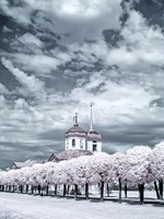 Россия. Москва. Усадьба Кусково. Kuskovo. An ancient palace complex and the park of Count Sheremetyev. Infrared photography. Фото ppl1958-Depositphotos