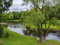 Россия. Парки Пскова. Pskov, a picturesque Park in the valley of the Pskova;river in the rain. Фото oroch2 - Depositphotos