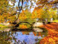 Россия. Пушкин. Екатерининский парк. Bridge in golden fall (mellow autumn) in Catherine park, Pushkin, Saint Petersburg, Russia. Фото mistervlad - Deposit