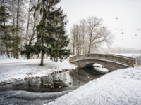 Россия. Пушкин. Екатерининский парк. Ducks swim in an ice-hole in the river under the bridge in Tsarskoye Selo. Фото yulenochekk - Depositphotos