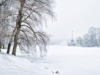 Чесменская колонна. Chesme Column and the Turkish Bath in Tsarskoye Selo through the winter snowstorm and trees on the shore of the pond. Фото yulenochekk-Dep