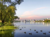 Россия. Татарстан. Панорама Казани. Lake View Wild boar with ducks and swans in the evening. Kazan, Tatarstan, Russia. Фото Belikart - Depositphotos