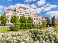 Россия. Татарстан. Казань. Flowers and the Kazan Town Hall on Freedom Square in Kazan, Tatarstan. Фото TischenkoPhoto - Depositphotos