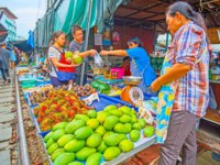 The farmers stall of Maeklong Railway Market with heaps of papaya, rambutan, mangosteen and kitten, playing among the fruits in Maeklong. Фото efesenko - Deposit