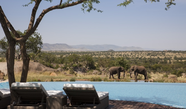 Клуб путешествий Павла Аксенова. Танзания. Four Seasons Safari Lodge Serengeti. Pool