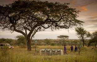 Клуб путешествий Павла Аксенова. Танзания. Four Seasons Safari Lodge Serengeti. Bush Dinner