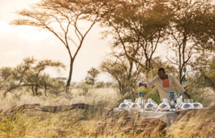 Клуб путешествий Павла Аксенова. Танзания. Four Seasons Safari Lodge Serengeti. Bush Dining
