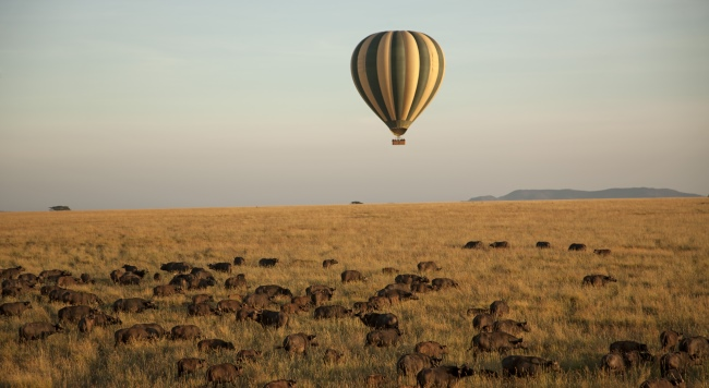 Клуб путешествий Павла Аксенова. Танзания. Four Seasons Safari Lodge Serengeti. Balloon Tour