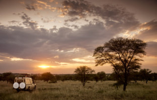 Клуб путешествий Павла Аксенова. Танзания. Four Seasons Safari Lodge Serengeti. Safari