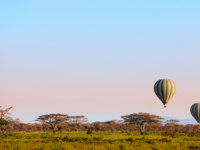 Клуб путешествий Павла Аксенова. Танзания. Early morning flight of hot balloon over Serengeti national park, Tanzania. Фото shalamov - Depositphotos