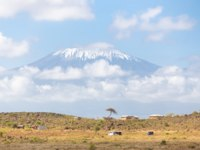Mount Kilimanjaro, Tanzania., the highest mountain in Africa. Traditional african savannah village in foreground. Фото kasto - Depositphotos