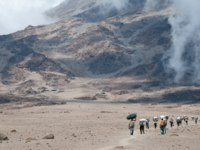 Porters crossing the Saddle on Kilimanjaro on route to Kibo Hut, the final camp before the summit attempt by trekkers. Фото mountaintreks - Depositphotos
