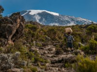 A porter heading down the rocky path from Millenium Camp back to the main enterance of the National Park. Фото mountaintreks - Depositphotos