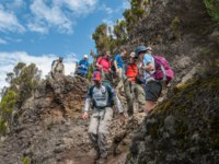 Group moving up Shira Ridge on Machame Route towards Camp 2. Фото mountaintreks - Depositphotos