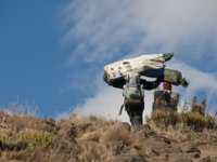 Танзания. Восхождение на гору Килиманджаро. A group of porters passing through the moorland zone on Rongai Route on Kilimanjaro. Фото mountaintreks - Depositphotos