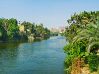 Египет. Река Нил. El Roda island and Nile Cornish in City Garden district are covered by lush greenery, Cairo, Egypt. Фото efesenko - Depositphotos