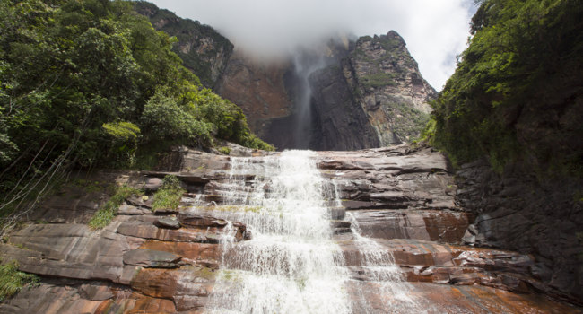 Венесуэла. Водопад Анхель. Kerepakupai Vena or Angel Falls, Salto Angel in the clouds. Bolivar State. Venezuela. Фото piccaya - Depositphotos
