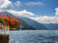 Италия. Озеро Комо. Red flowers by Lake Como. Фото Anna-Mari West - Depositphotos