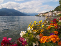 Италия. Озеро Маджоре. Lake Maggiore in front of Bellagio, Italy. Фото Emanuele Rinaldi -  Depositphotos
