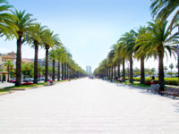 Испания. Каталония.  Beach boulevard in Salou with palm trees in Tarragona Spain. Фото TONO BALAGUER SL - Depositphotos