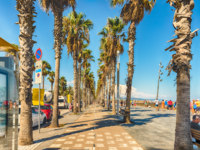 Испания. Каталония. Барселона. Bike lane with palm trees, Barceloneta beach, Barcelona, Catalonia, Spain. Фото marcorubino - Depositphotos