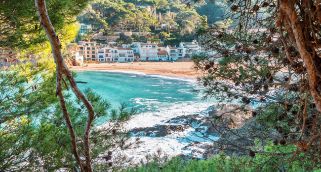 Испания. Коста Брава. Бегур. Spain. The coastline of Costa Brava, La Sera, Begur. Nice view of the azure sea. A view through fir branches. Фото karnavall - Depositphotos