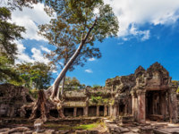 Камбоджа. Храмовый комплекс Ангкор. Ancient buddhist khmer temple in Angkor Wat complex. Фото deltaoff - Depositphotos