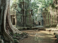 Камбоджа. Храмовый комплекс Ангкор. Angkor Wat monk. Ta Prom Khmer ancient Buddhist temple in jungle forest. Фото ermakovaphotography - Depositphotos