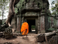 Камбоджа. Храмовый комплекс Ангкор. Angkor Wat monk. Ta Prom Khmer ancient Buddhist temple in jungle forest. Фото sergwsq - Depositphotos