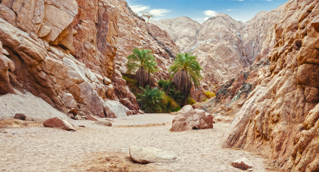 Египет. Цветной каньон. Canyon in Egypt. Egypt, the mountains of the Sinai desert, Colored Canyon. Фото AZZ - Depositphotos