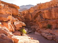 Клуб Павла Аксенова. Египет. Синай. Цветной каньон. Canyon in Egypt. Egypt, the mountains of the Sinai desert, Colored Canyon. Фото AntonMaster - Depositphotos