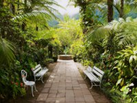 Заморские территории Франции. Остров Реюньон. Garden in the oldest colonial estate Maison Folio in Hell-Bourg, Reunion island. Фото dchulov - Depositphotos