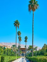 Иран. Шираз. The alley with palms, Delgosha Garden, Shiraz, Iran. Фото efesenko - Depositphotos