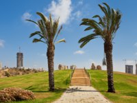 Израиль. Ашдод. Alley in urban park with palms and green grass as residential buildings on background in city of Ashdod, Israel. Фото rglinsky - Depositphotos