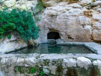 Израиль. Хайфа. View of a spring and a pool (Ein Meshotetim, explorers spring) along Wadi Siah. This green valley is a refuge from the bustle of the city, in Haifa, Israel