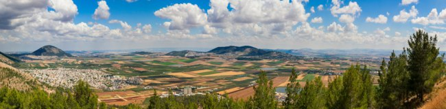 Fantastic landscape of Jezreel Valley (Emek Yizra'el). Green fertile plain between Galilee Mountains covered with fields of wheat, cotton. North Israel. Фото Zidel-Deposit