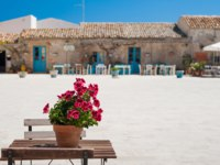 Main square in Marzamemi, a picturesque sicilian fishing village, with a flowered vase of geraniums on a small table in the foreground. Фото siculodoc-Deposit