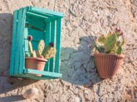 View of an ornamental wooden fruit box hung in the external wall of a stone house as a vase holder for a cactus plant. Фото siculodoc - Depositphotos