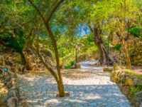 Италия. Сицилия. Таормина. View of a garden situated on Isola Bella near Taormina, Sicily, Italy. Фото Dudlajzov - Depositphotos