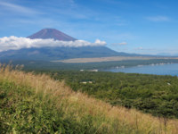 Япония. Гора Фудзияма. Mountain Fuji and lake yamanakako in summer season. Фото Torsakarin - Depositphotos